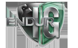 Endur IG